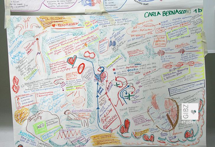 Mind-Map Herzkreislauf