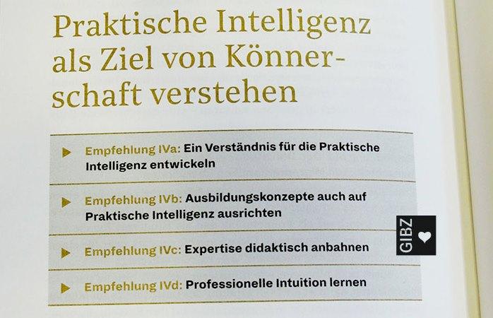 Höchstleistung: Praktische Intelligenz & Könnerschaft von Lernenden