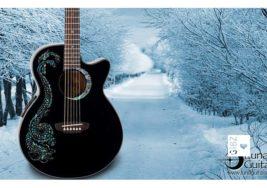ABU Projektarbeit ELO3a#2_Gitarre