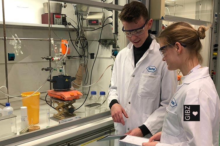 Wenn die Chemie stimmt – Studienwoche Chemie & Materialwissenschaft von SJf
